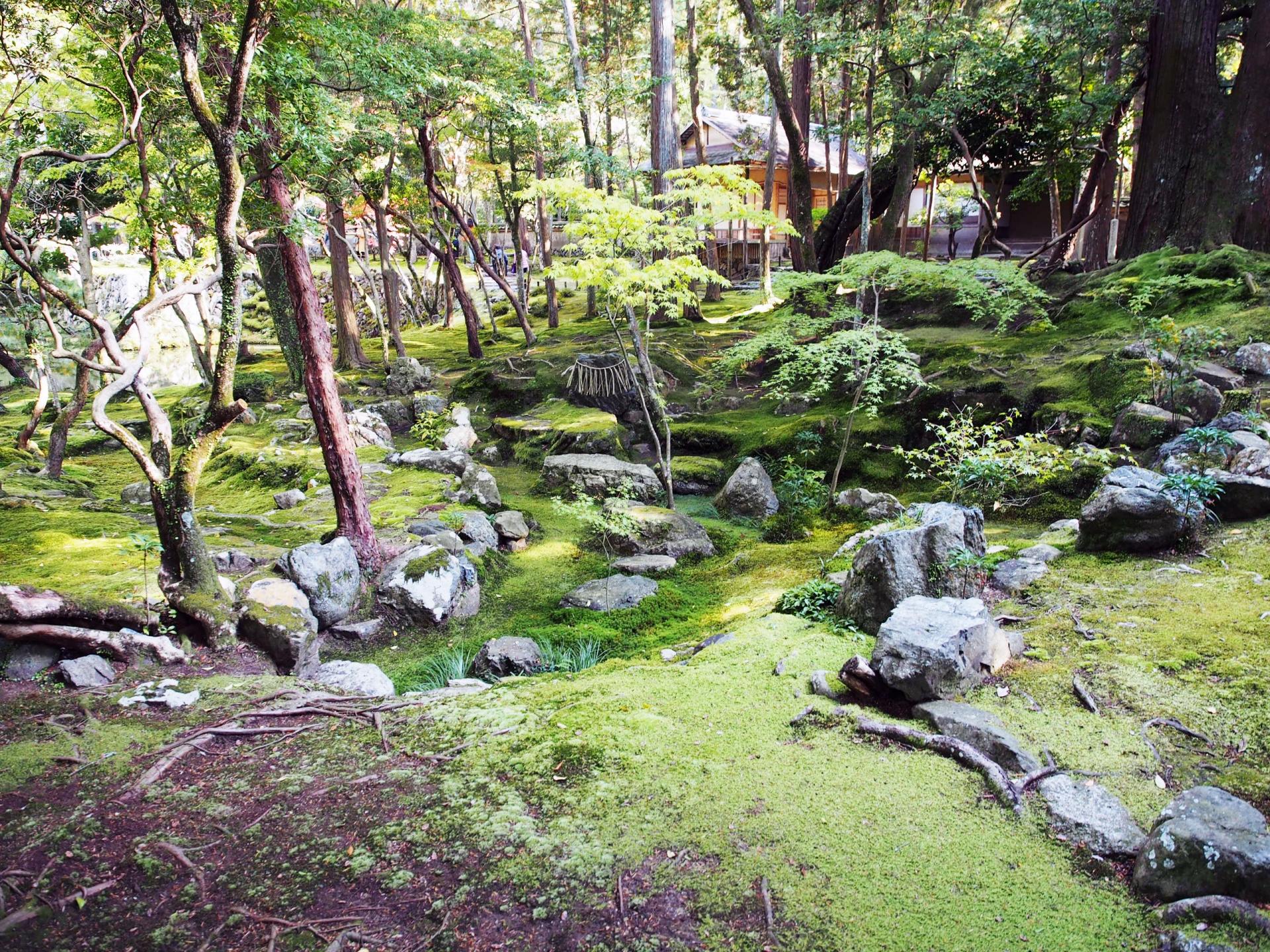西芳寺庭園の枯山水