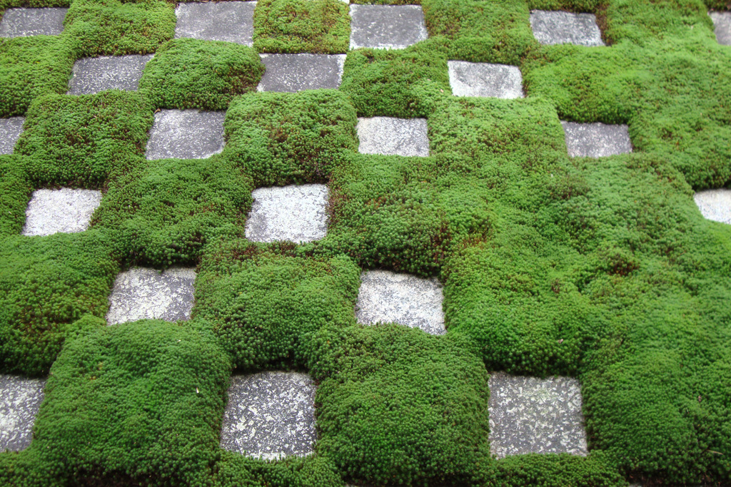 東福寺本坊庭園の北庭