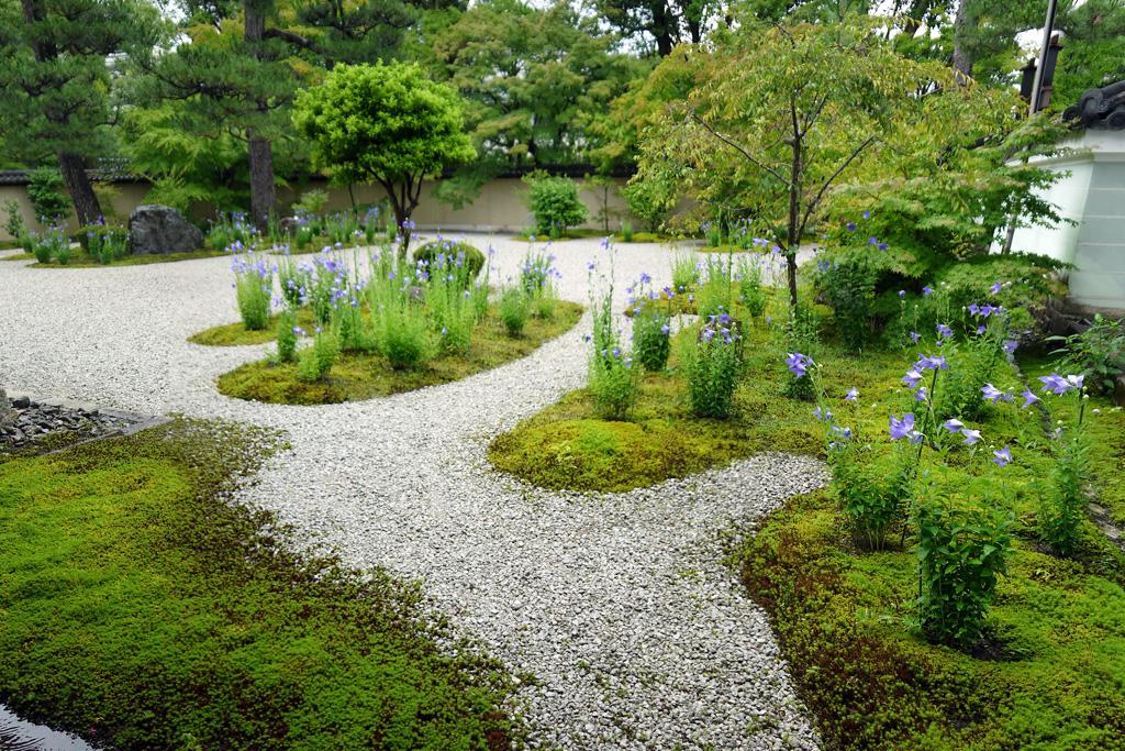 廬山寺庭園の枯山水(源氏の庭)