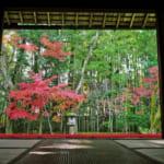 大徳寺高桐院庭園の枯山水