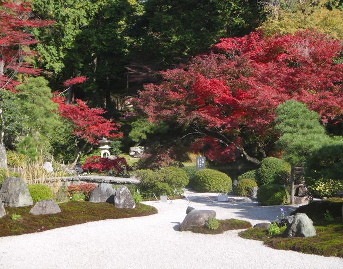 金戒光明寺庭園の枯山水