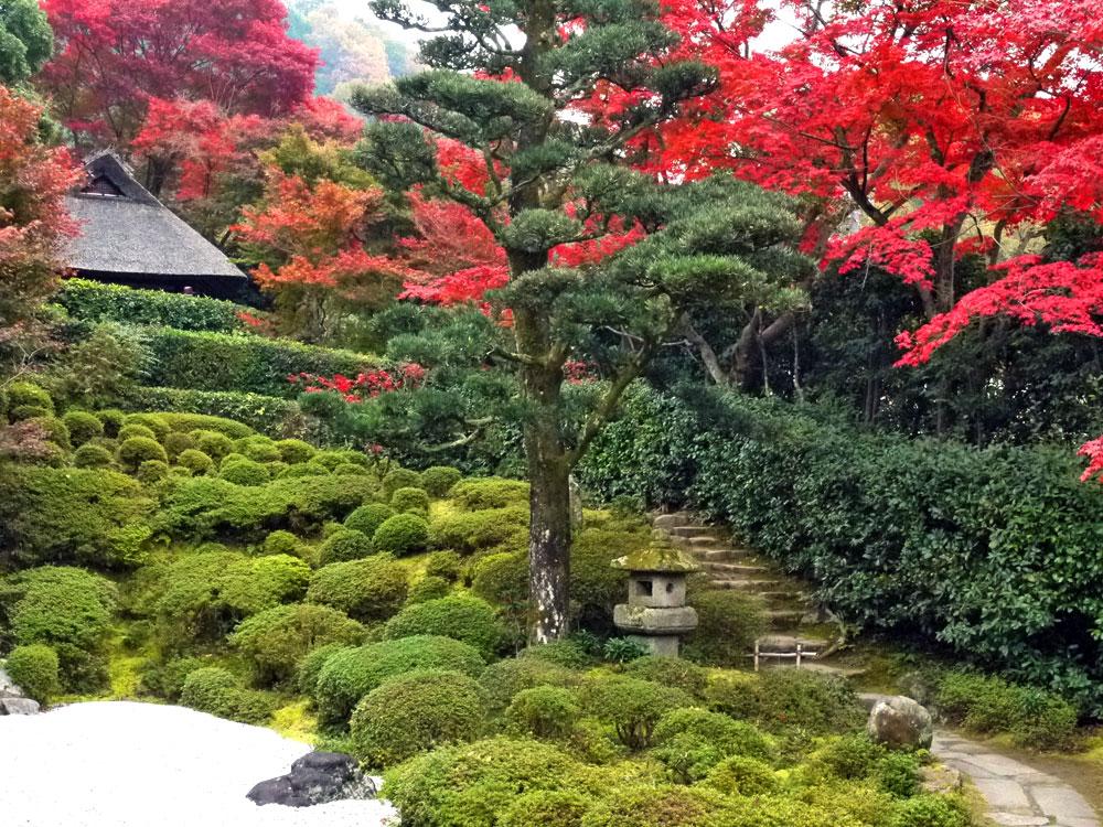 金福寺庭園の枯山水