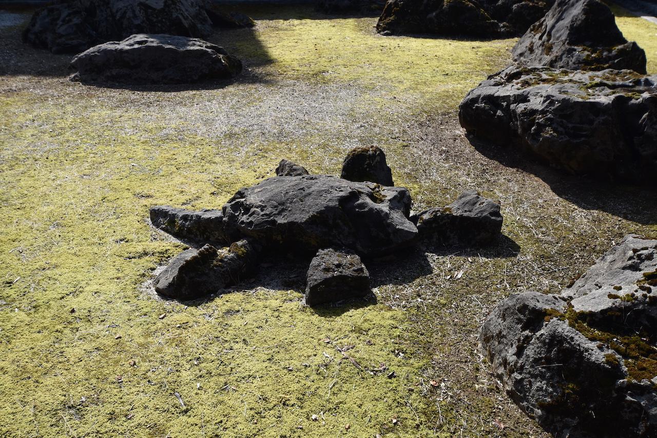 国泰寺の亀石